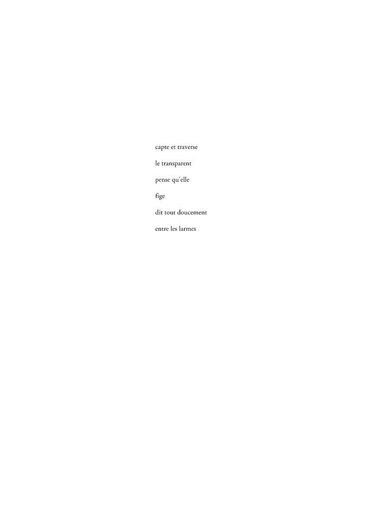 capte et traverse-page-001 (1)